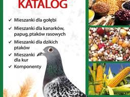 17 видов корма для почтовых голубей на любое время года.