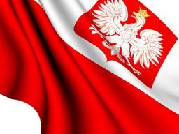 | Фирма в Польше за 2-3 рабочих дня