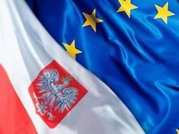 Перевод и заполнение любых документов на Польском и английских языках.