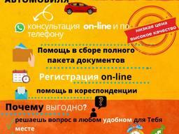Консультация/помощь с картой побыту, разрешением на работу, регистрацией автомобиля