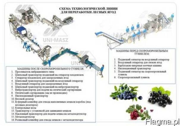 Линия для переработки ягод