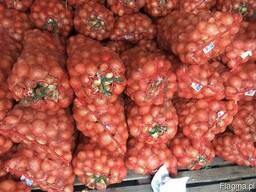 Лук калиброванный 5 сетка 15 кг Узбекистан