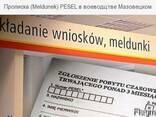 Мельдунек в Варшаве за 1 день - фото 1