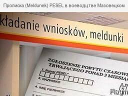 Мельдунек в Варшаве за 1 день