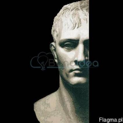 Мозаика из стекла Наполеон 1300x2905 мм