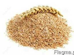 Otreby pszenne
