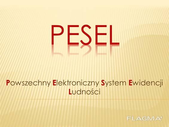 PESEL(песель), Meldunek(мельдунек) в Варшаве 1 день