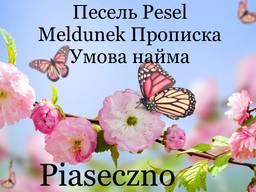 Pesel Песель Meldunek Прописка