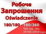 Піврічні, річні робочі візи в Польщу - фото 1