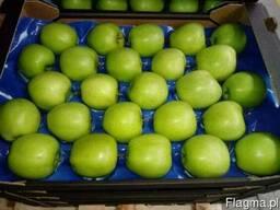 Польские яблоки, Клубника - фото 2