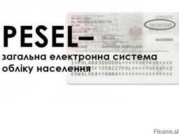Помощь в получении Pesel в Варшаве, быстро.