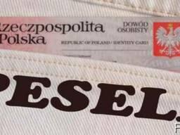 Помощь в заполнении документов для получения песель - PESEL