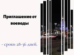 Приглашение от воеводы 360/360