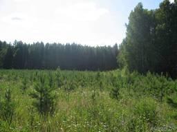 Продам земельные участки под инвестицию
