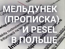 Прописка Песель Вроцлав и другие города