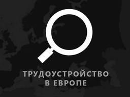 Рабочие приглашения в Польшу. Виза в Польшу