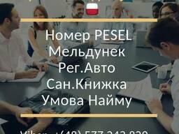 Рег. Авто, PESEL, Прописка, Сан. Книжка, Умова Найму