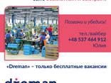 Сотрудничество с кадровыми агенствами и рекрутерами - фото 2
