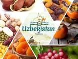 Сухофрукты из Узбекистана - фото 1