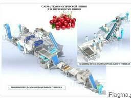 Технологическая линия для переработки вишни
