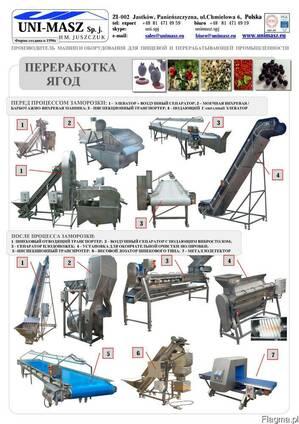 Технологическая линия для переработки ягод