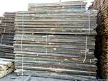 Timber edged and not edged from hornbeam