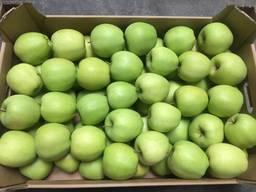 Яблоки Голден 70